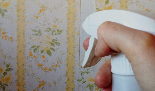 відмочування вінілових шпалер водою
