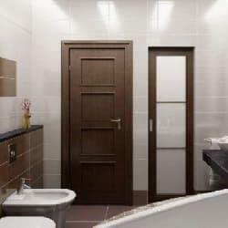 які двері для ванни кращі